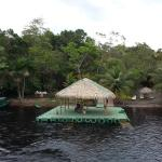 Foto de Amazon Ecopark Jungle Lodge