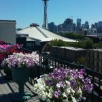 Space Needle - Roof View