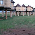 Sarova Salt Lick Game Lodge照片