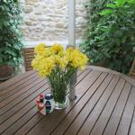 Patio table outside the apartment in walled garden