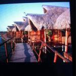 Flamingo Bay Water Lodge Foto