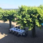 Table laid for dinner under the plane trees...