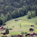 Another view from the triple room - looking at the valley & the cog wheel train to Wengen