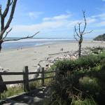 The beach looking north off the bluff at Kalaloch Lodge