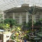 Foto di Gaylord Opryland Resort & Convention Center