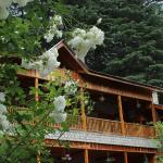 Foto Mayflower Manali