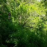 Da Flying Frog Canopy Tours Foto