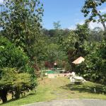 Foto de Sepilok Forest Edge Resort