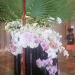 Orchids were everywhere in the hotel - so pretty!