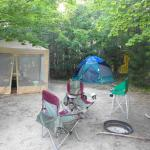 Our site in hardwoods, secluded section