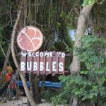 Bubbles Dive Centre and Resort照片