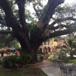 Howard Johnson Inn-Historic St Augustine Foto