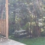 View from the deck and the side yard.