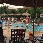 Pool, the afternoon of 7/25/15