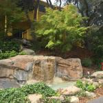 Foto de Sycamore Mineral Springs Resort and Spa