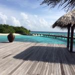 Photo de Coco Bodu Hithi