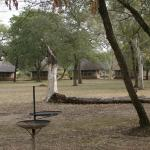 Photo of Satara Rest Camp