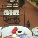The pigeons at breakfast hoping a crumb would fall -- they made us laugh