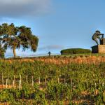 Vineyards and Grape Crusher Statue