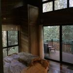 Views to wake up to from the bedroom