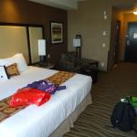 Φωτογραφία: BEST WESTERN PREMIER Freeport Inn & Suites