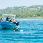 Offering only the best in Diving on Roatan!