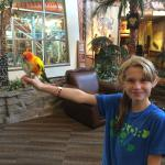 Feeding the conures!