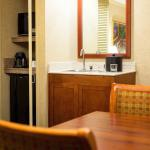 Embassy Suites by Hilton San Antonio - International Airport Foto