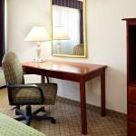 Foto di Holiday Inn Mobile West I-10