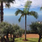 Photo de Vidamar Resort Madeira