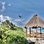 Photo of Occidental Grand Xcaret & Royal Club