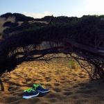 Le Dune Resort - Piscinasの写真