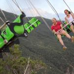 The swings over the canyon