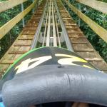 Photo of Rainforest Bobsled Jamaica at Mystic Mountain