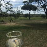 Watching zebras in the distance while enjoying a glass of wine