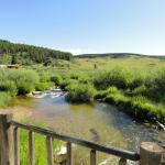 Stream flowing through the ranch
