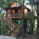 Coblentz Country Cabins