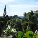 Photo de Hacienda Tamarindo