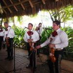 Mariachis at the Sunday Brunch