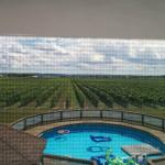 Foto de A Vineyard View Bed and Breakfast