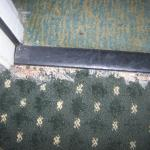 Carpet at entrance door to our room.