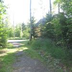 Path from lake to our cottage