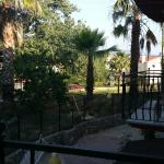 View from a 1st floor balcony