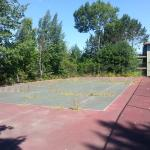 Waste of a tennis court -- overgrown with weeds