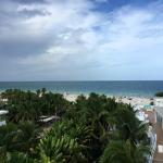 View from Room 610