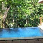 Private pool overlooking the jungle