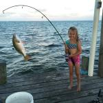 Fishing from the front pier!