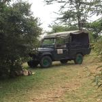 The game drive jeep