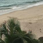 View of Sea Turtle from Room