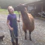 Photo de Twin Valley Bed and Breakfast and Horse Ranch